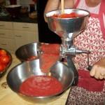 Cooking Seasonally